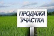 Продаётся участок - Суворовское. Код: 39496 Суворовское